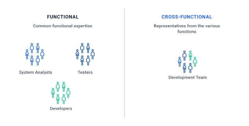 Cross Functional Team Design HR System Analysts Testers Developers