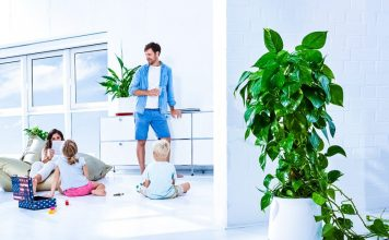 Airy Gadget Plant Pod Air Purifier Startup Fresh Healthy No Electricity Family Home