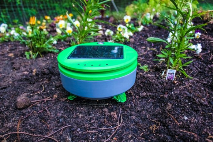 Tertill Weeding Robot Franklin Robotics Gardening Support Helper Bot