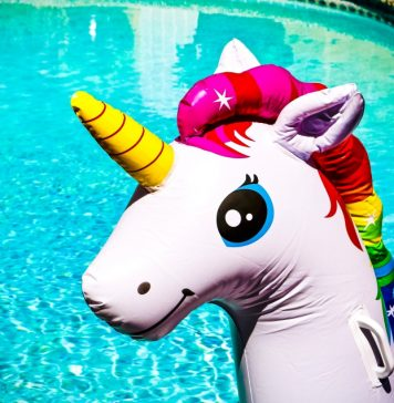 What-Is-A-Unicorn-Finance-Investing-VC-Article-Explainer-Guide