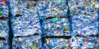 Researchers Study Engineered Bacteria Able to Biodegrade Plastic Polyethylene Terephthalate PET Ideonella Sakaiensis