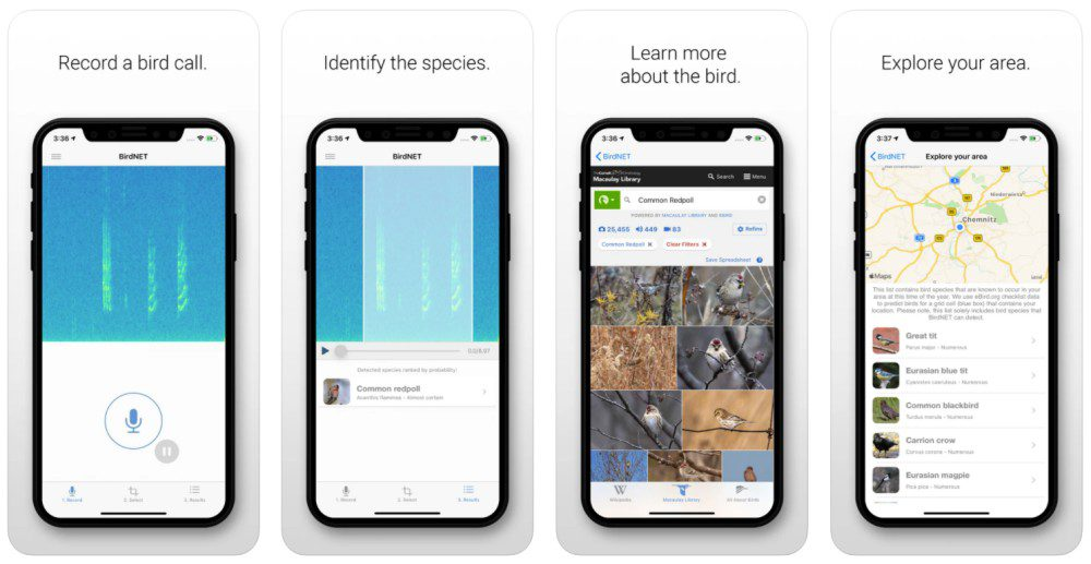 BirdNET ornithology bird call recognize identify species tweet audio recording app screenshots