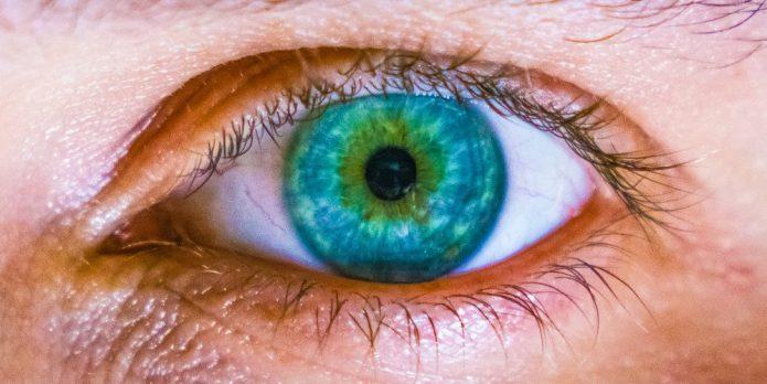 Netra AI Scans for Diabetic Retinopathy Reduces Vision Loss Intel Sankara Eye Foundation Leben Care
