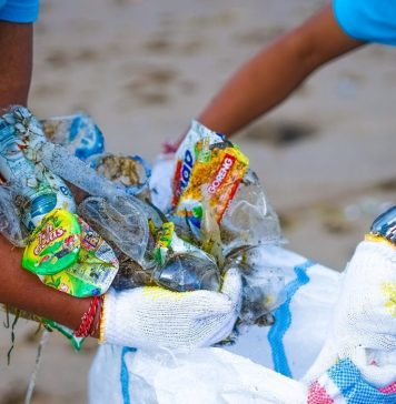 Earn Rewards from Your Plastic Waste with TrashCash
